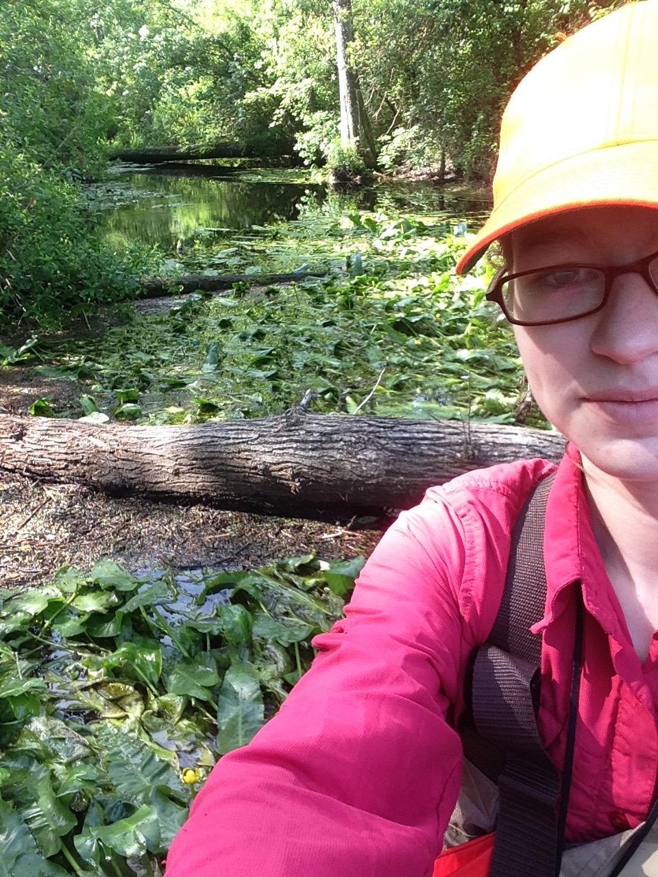 Katherine Culatta   North Carolina State University  M.S. project: Taxonomy, Population Genetics, and Status Assessment of Cape Fear Spatterdock ( Nuphar sagittifolia ; Nymphaeaceae)