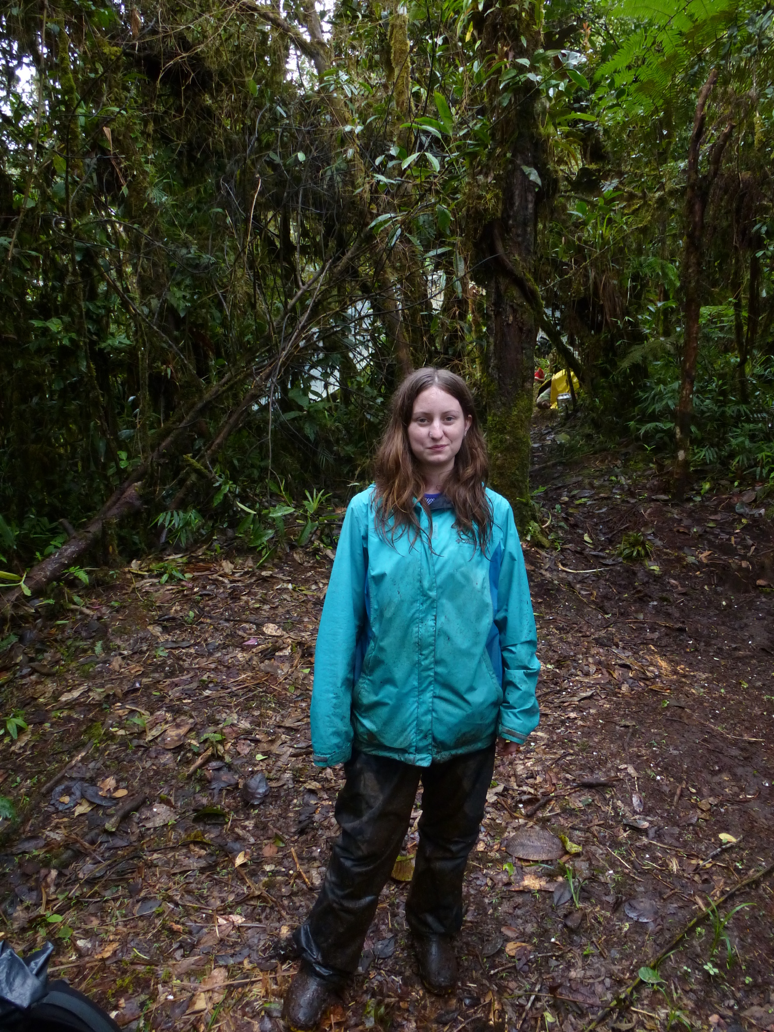 Kelsey Huisman   University of Wisconsin - Madison  Ph.D. project: Plant-microbial interactions in  Teagueia : a rapidly evolving and understudied lineage of orchids within the Andean biodiversity hotspot