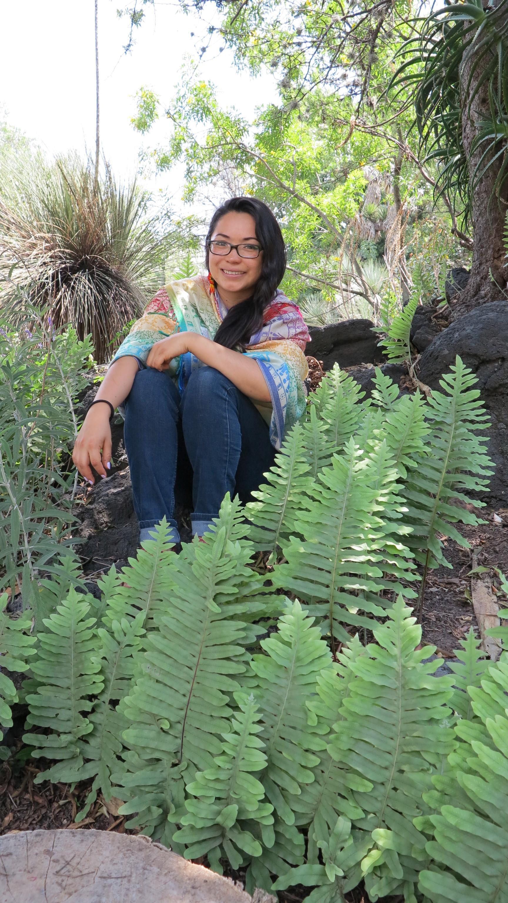 Ana Gabriela Martínez-Becerril   Universidad Nacional Autónoma de México  Ph.D. Project: Phylogenetics and taxonomy of the  Elaphoglossum petiolatum  complex (Dryopterydaceae)
