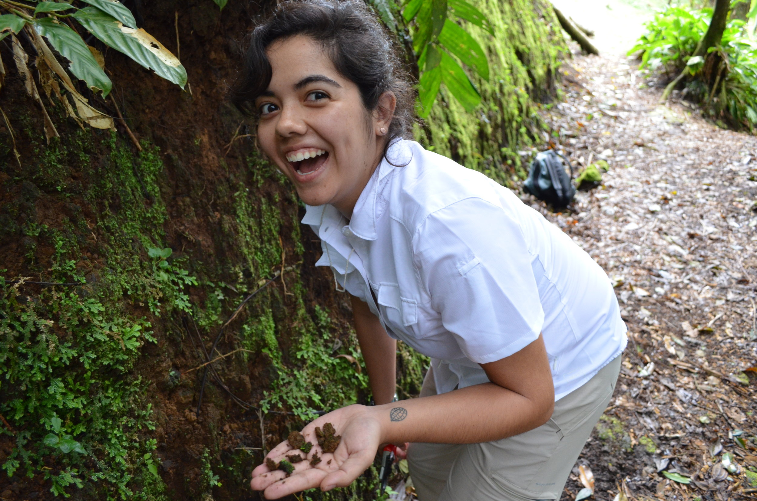 Shirley and Alan Graham Graduate Student Research Grant     Karla Sosa   Duke University  Ph.D. project: The role of ploidy and reproductive mode in the dispersal of Australasian  Cheilanthes  (Pteridaceae)