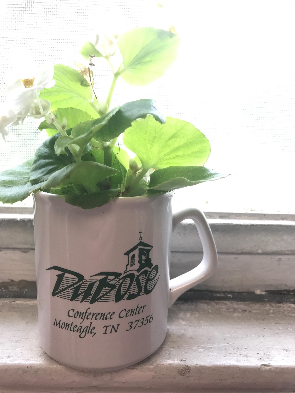 DuBose Mug & Flowers