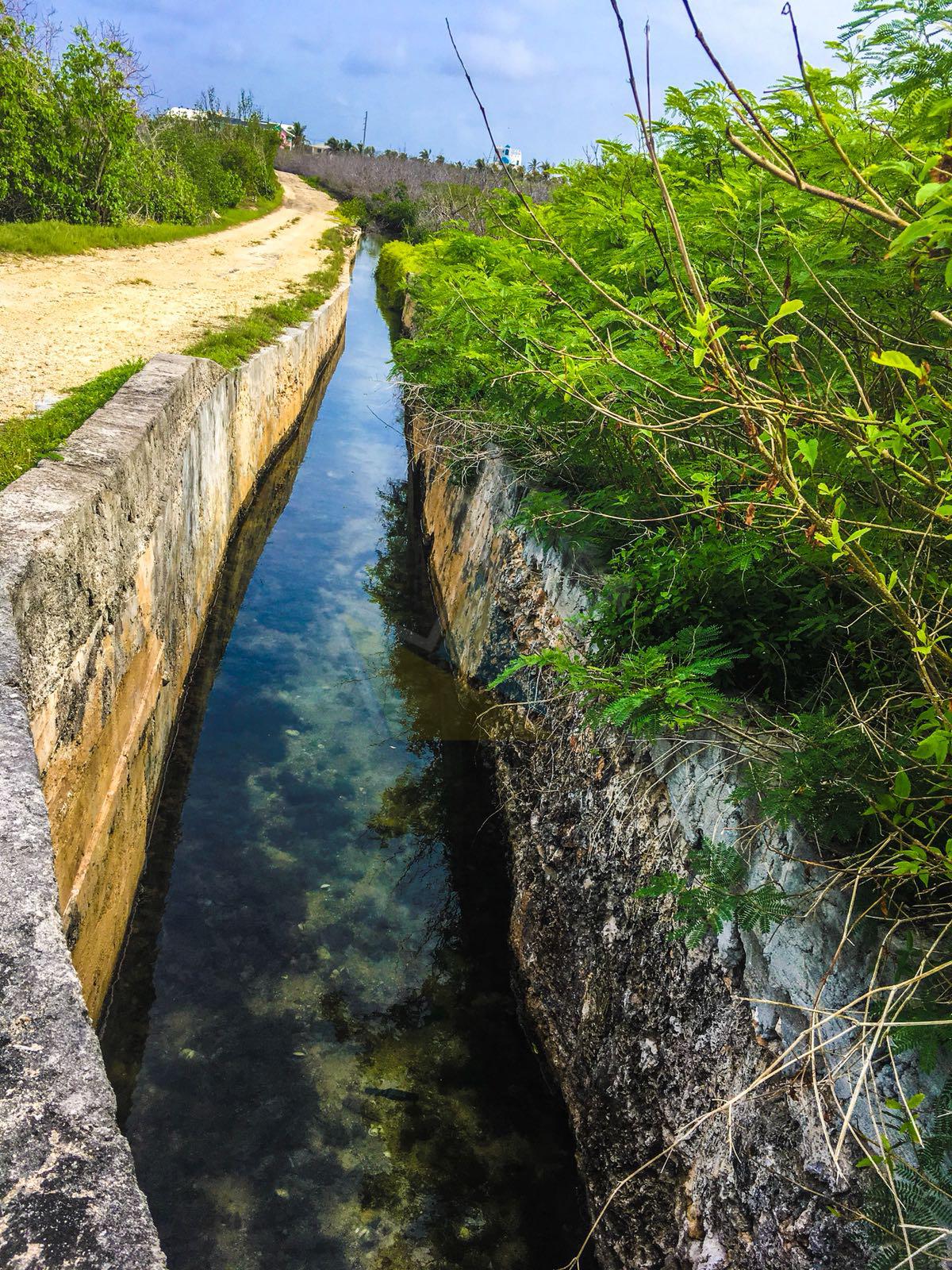 Salt Canals