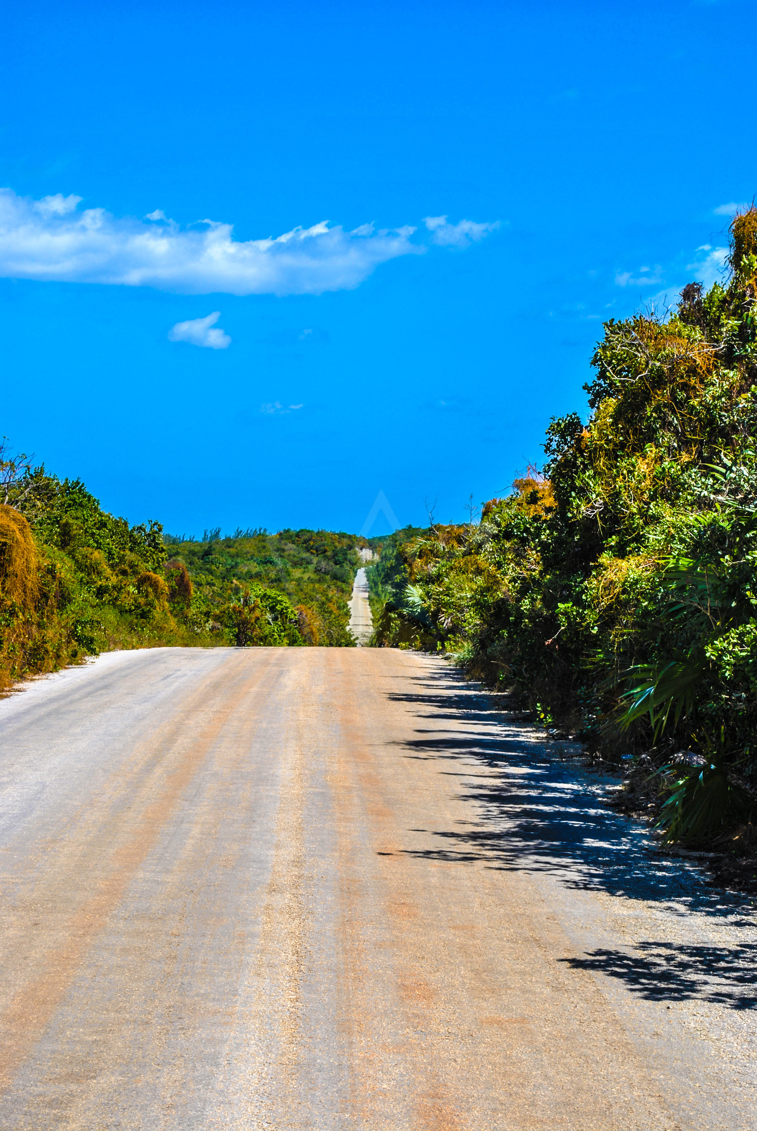 """""""Unending"""" road in North Eleuthera leading to Preacher's Cave."""