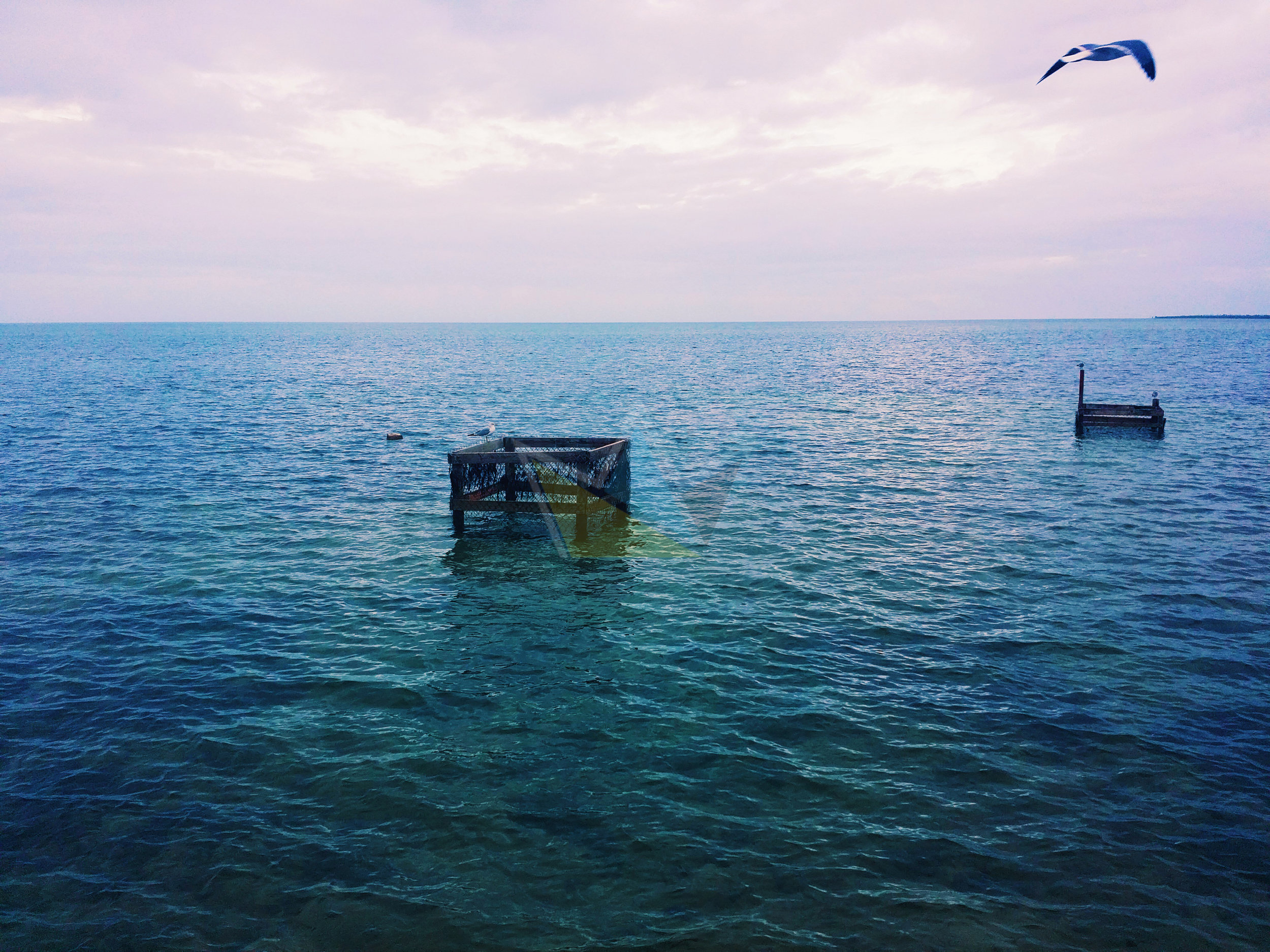 Lobster Trap off of West End, Grand Bahama