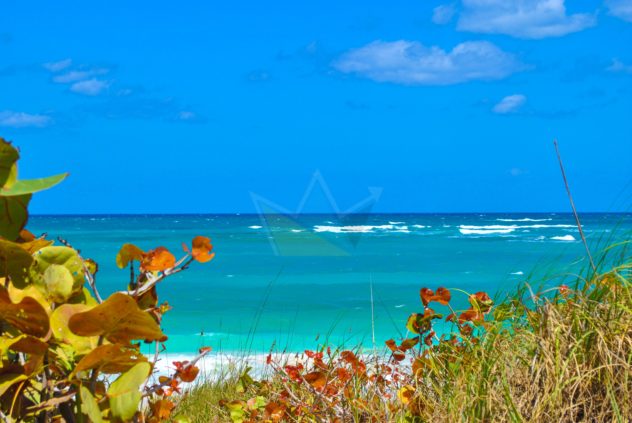 Tar Bay Beach, North Eleuthera