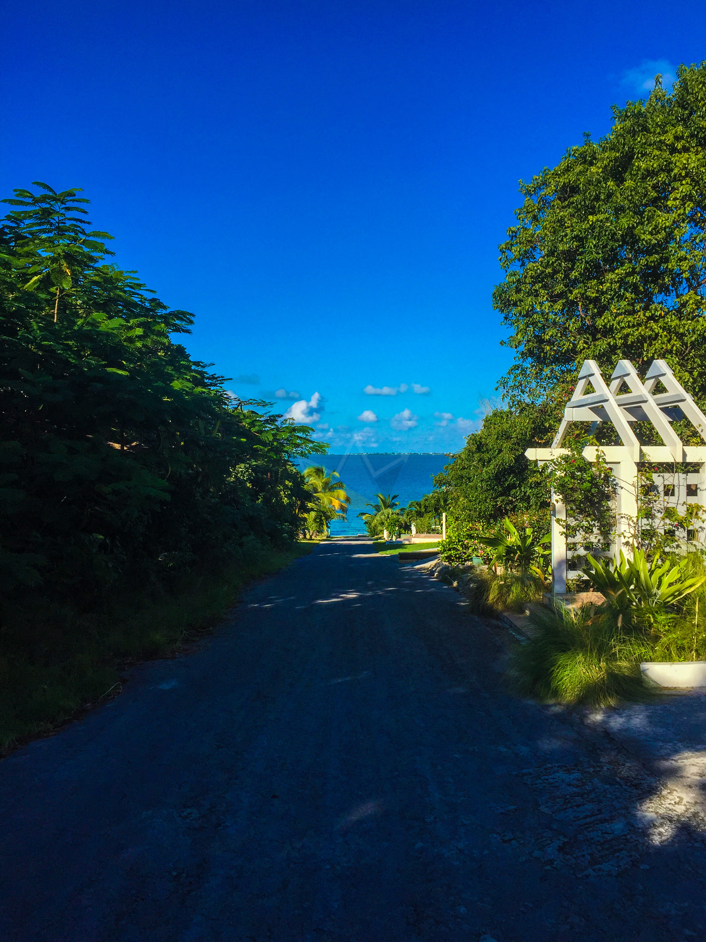 Road leading to shore in Marsh Harbour, Abaco