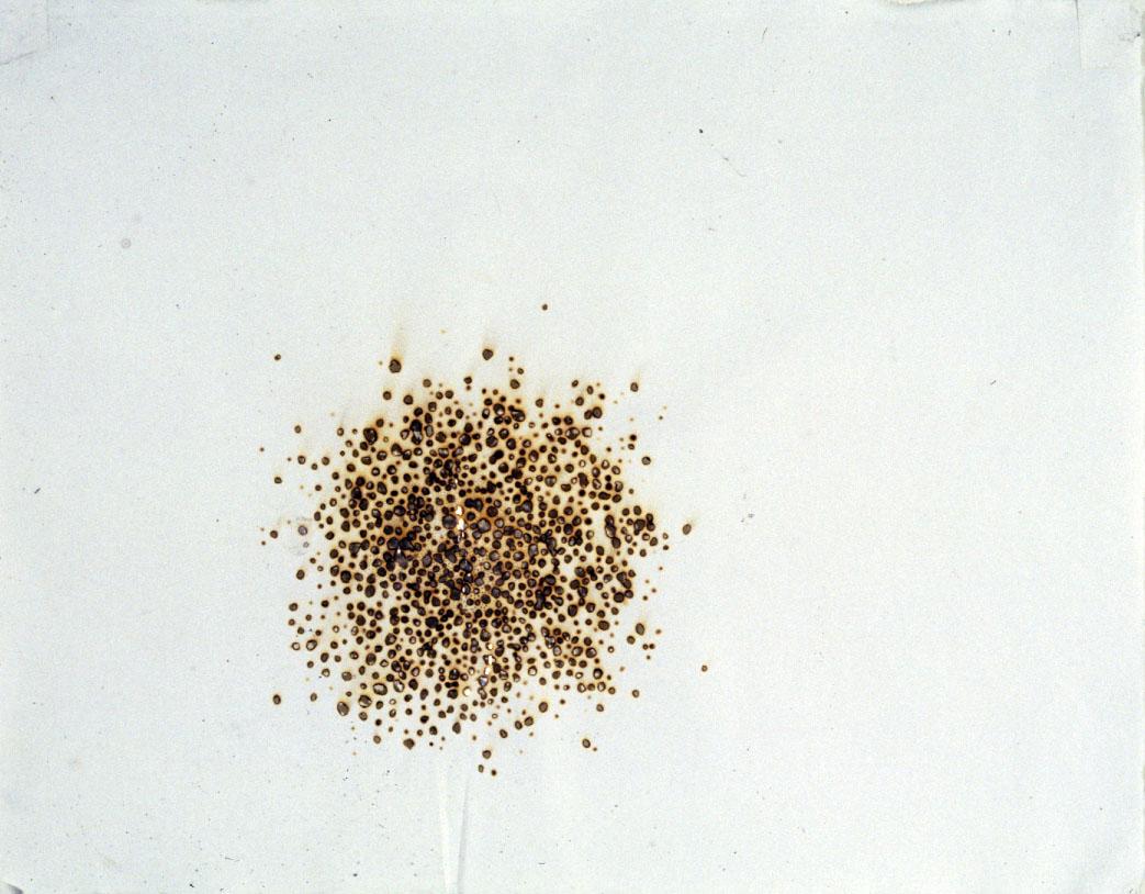 6 (1991)