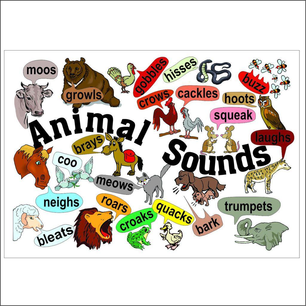 E-AS_Animal_Sounds_1024x1024.jpg
