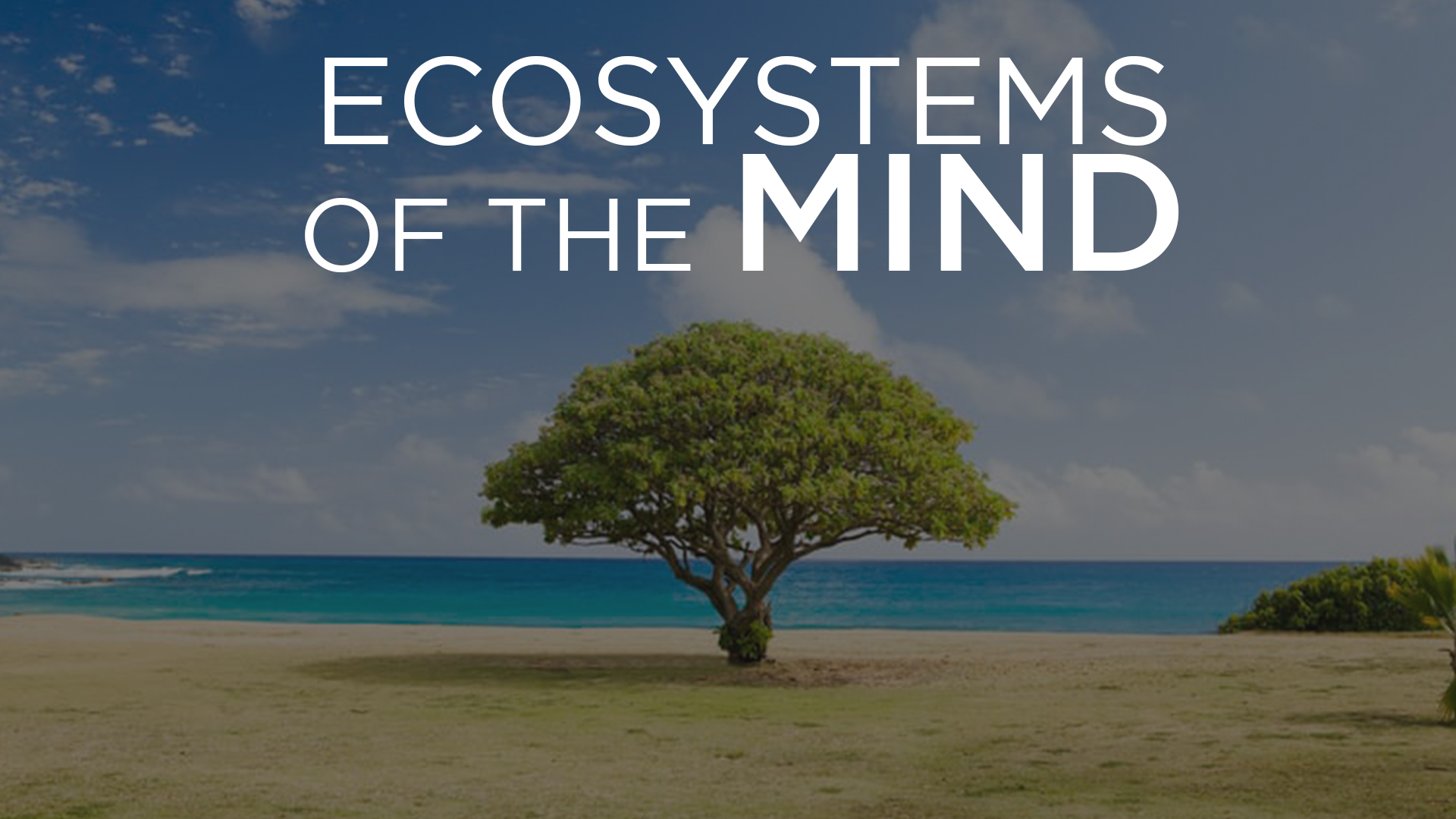 EcosystemsOfTheMind.jpg