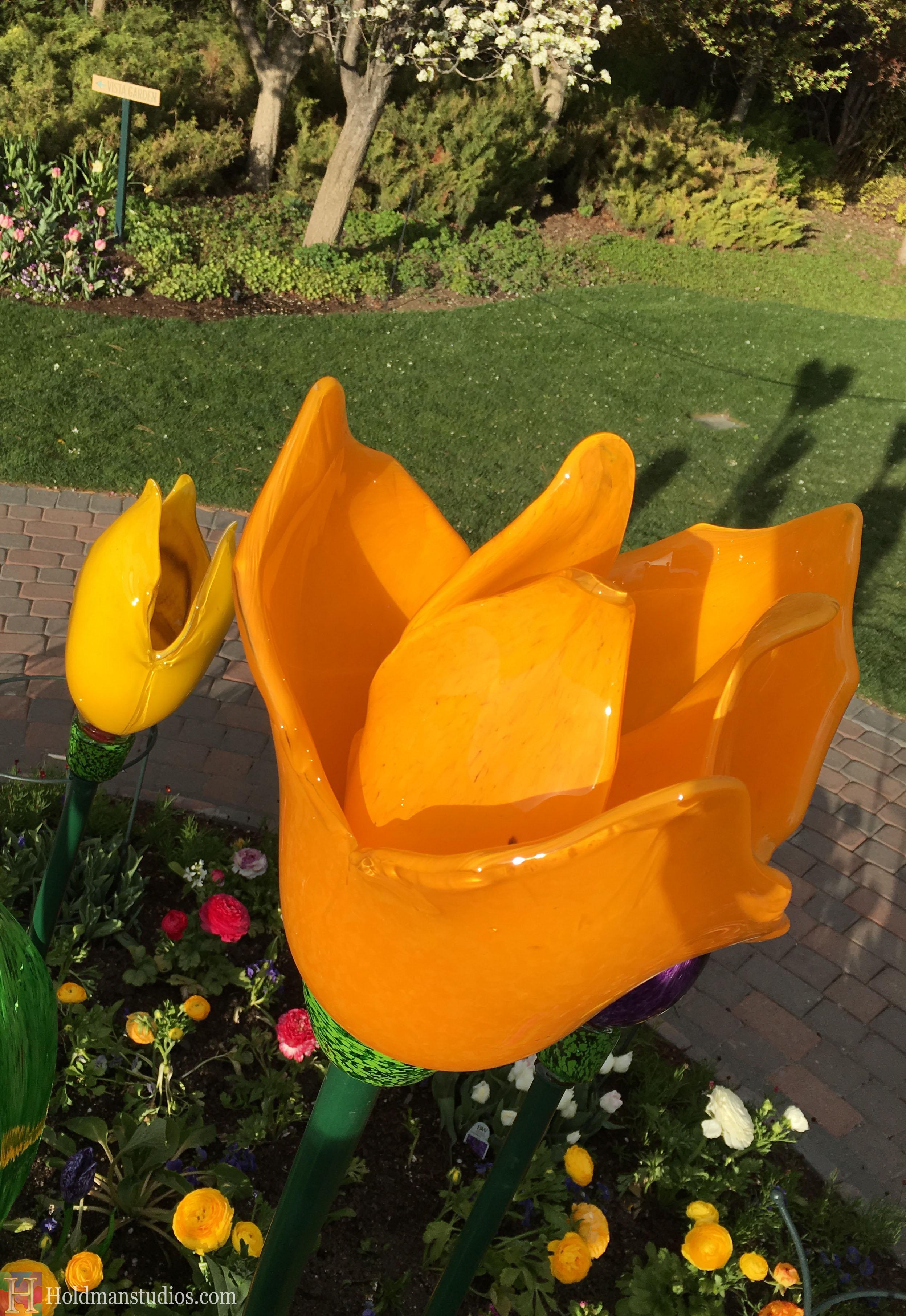 Blown Glass_Ashton Garden Tulips 4.jpg