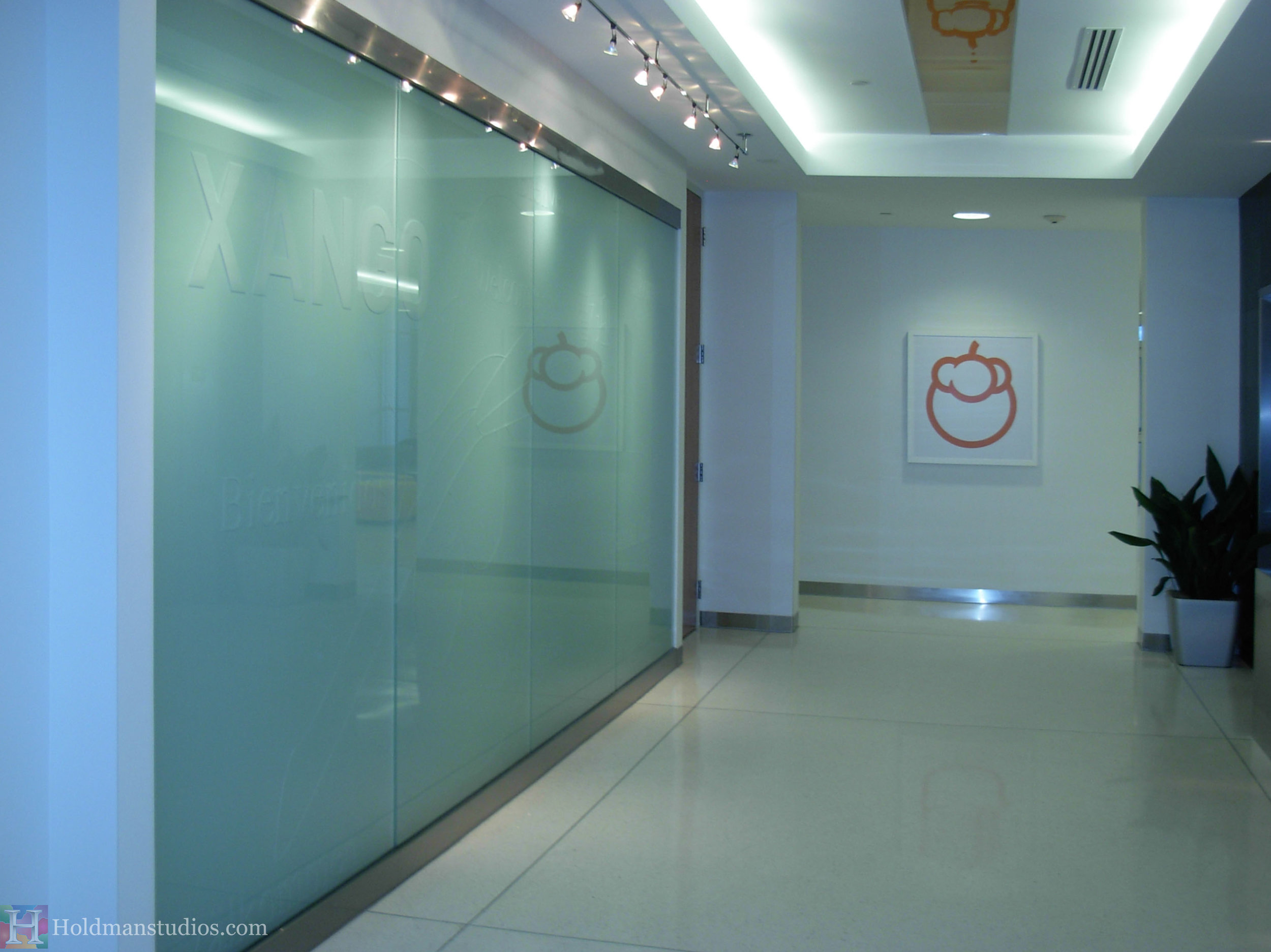 Holdman-studios-etched-art-glass-Xango-wall.jpg