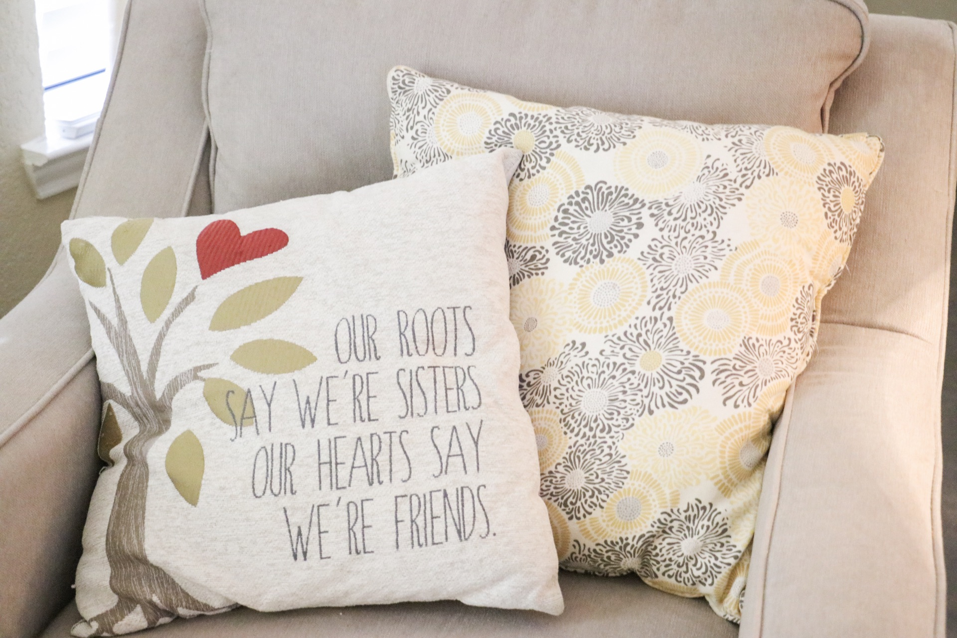 I believe these pillows are from either Pier One or Home Goods!