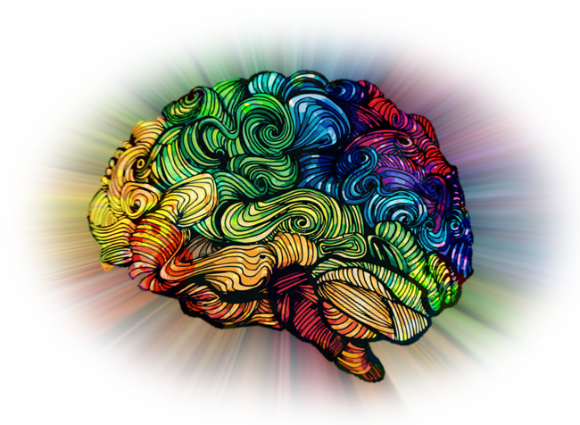 brainbow2.png