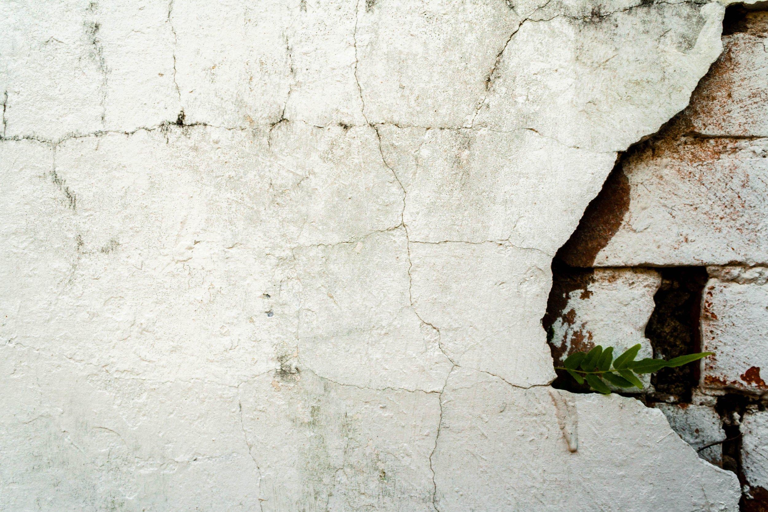 IMG_1950-Cemetary-Wall-NOLA.jpg