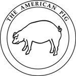 american pig.jpg
