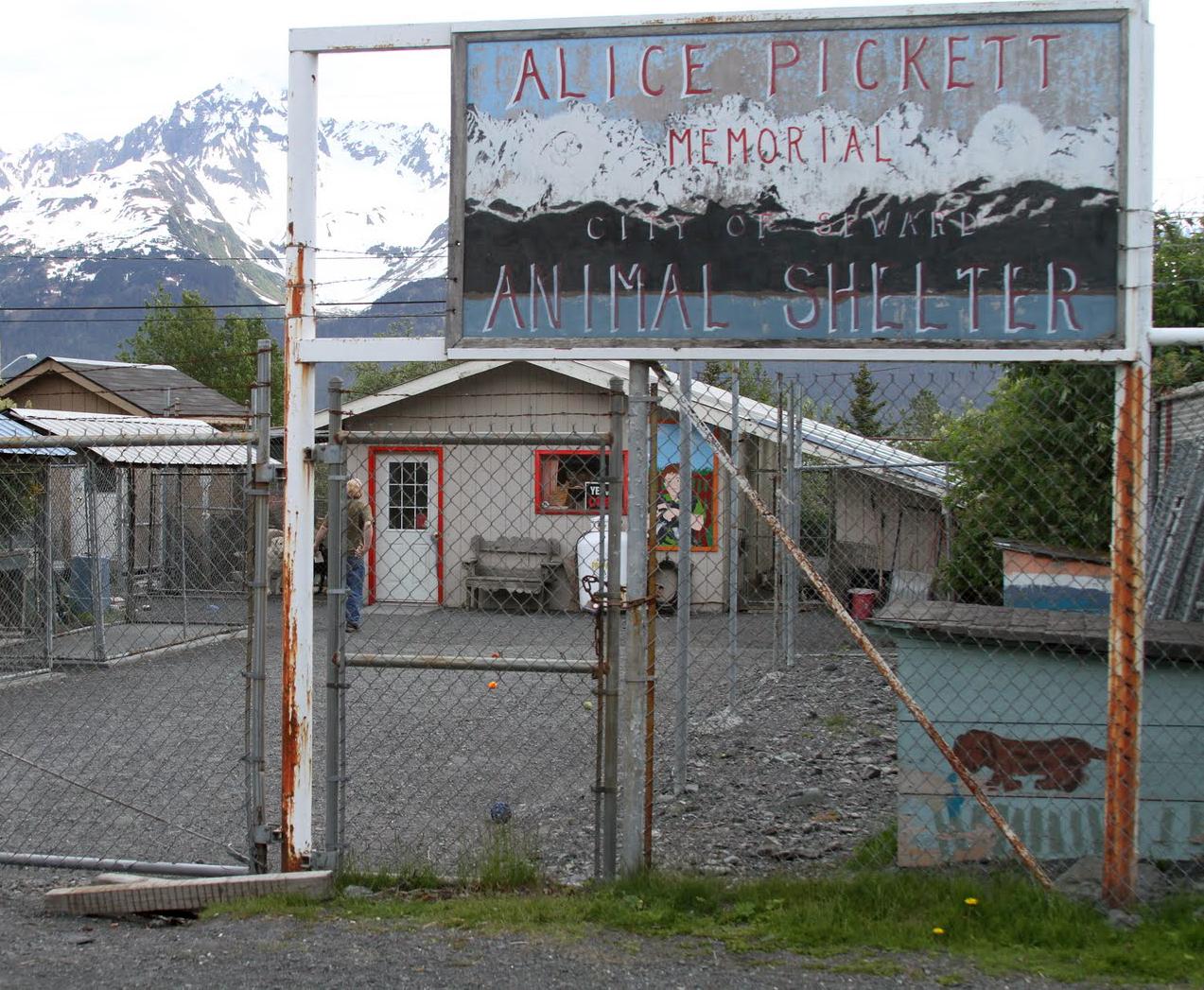 Seward, Alaska Animal Shelter