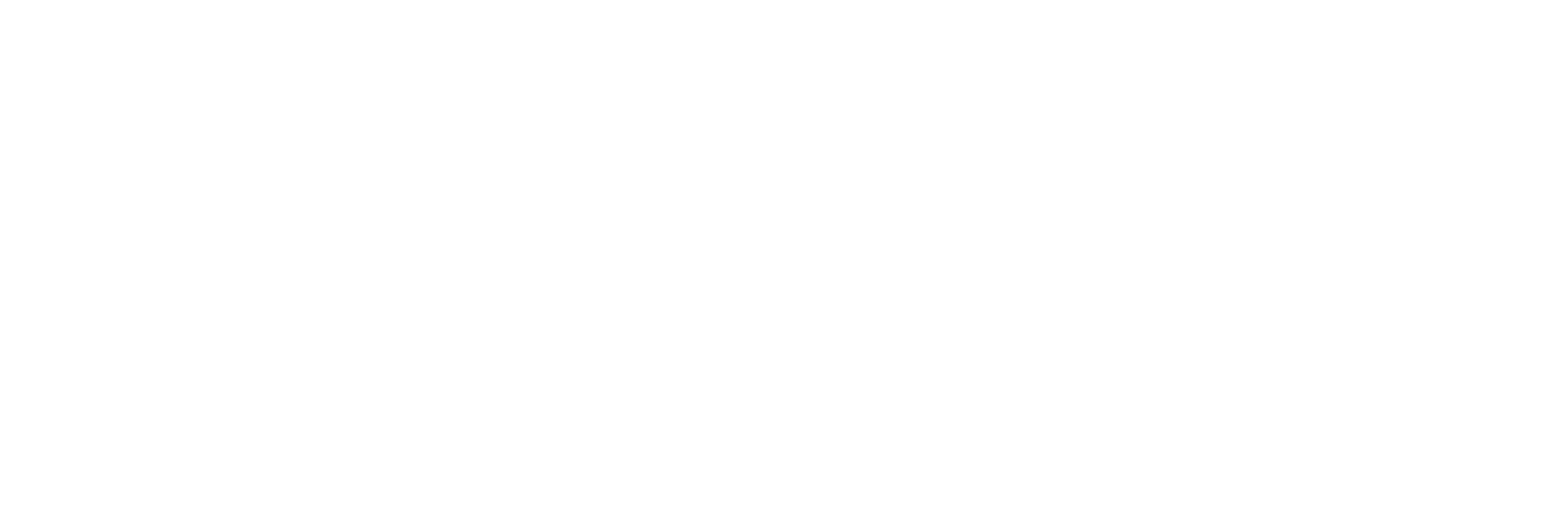 My Logo Full Name Visuals white.png