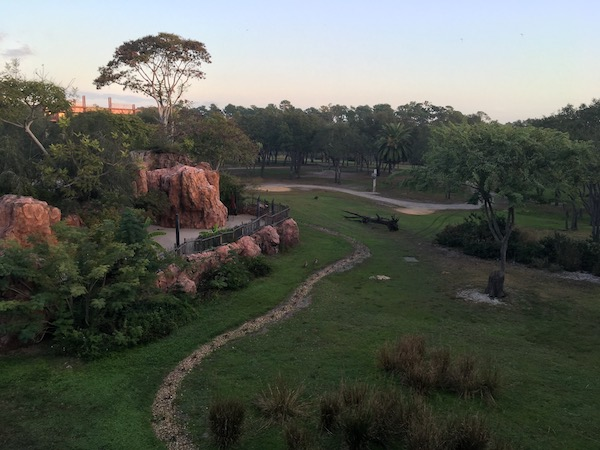 Our Savannah View room at the Animal Kingdom Lodge - our fourth night was free!