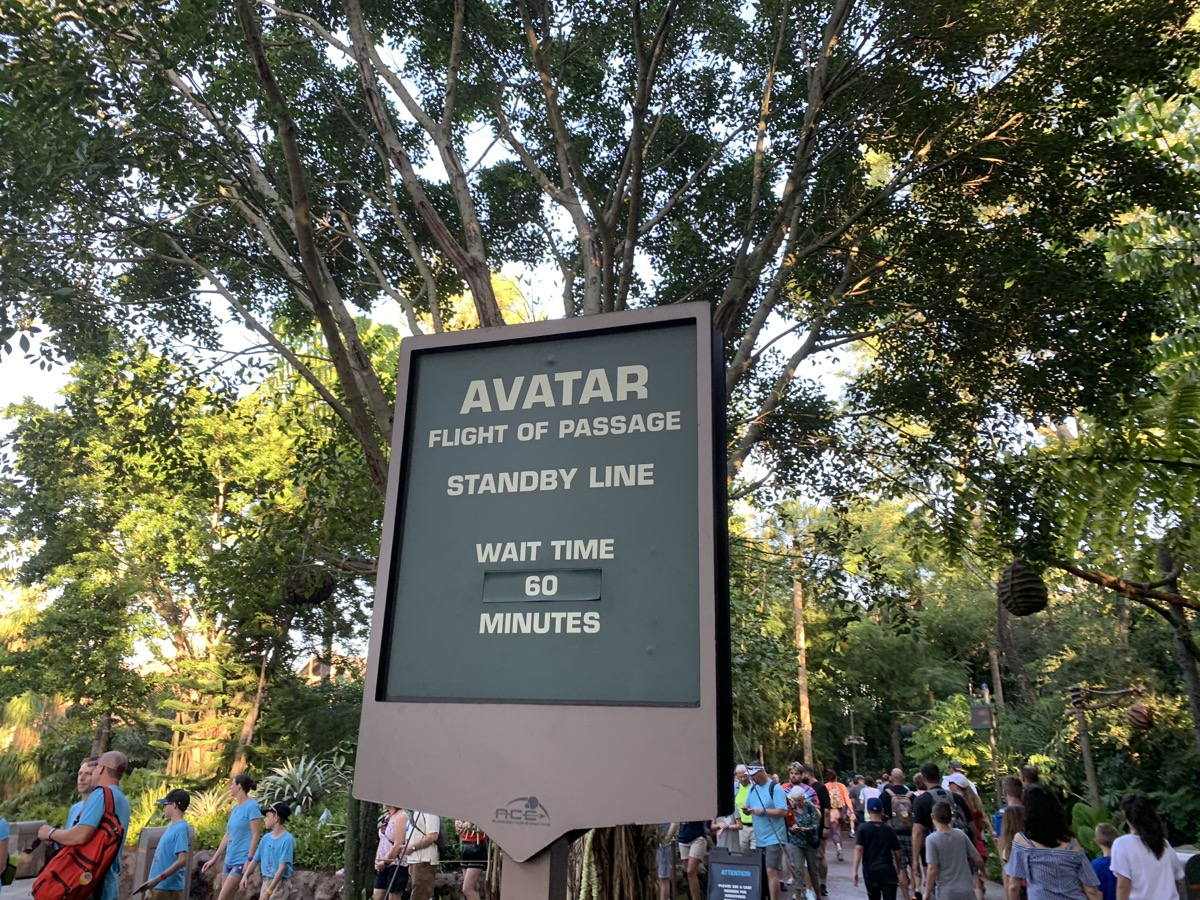 animal kingdom one day itinerary flight of passage wait.jpg
