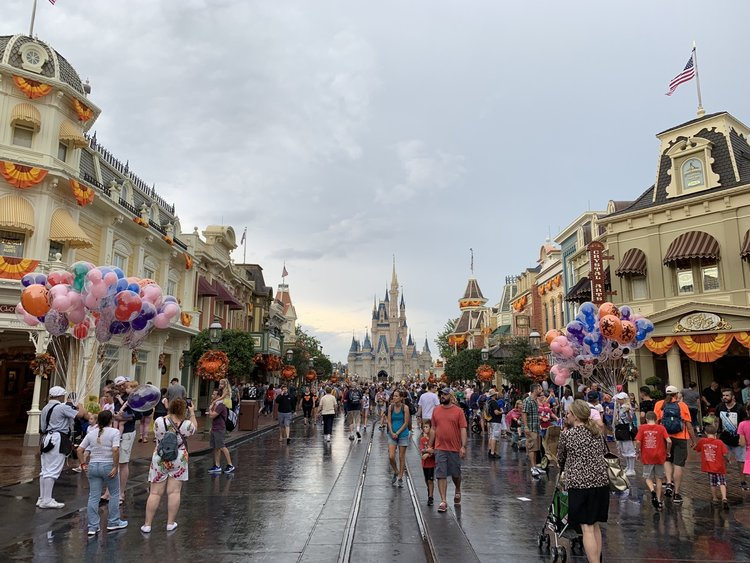 Magic Kingdom Rope Drop Strategy - Mouse Hacking