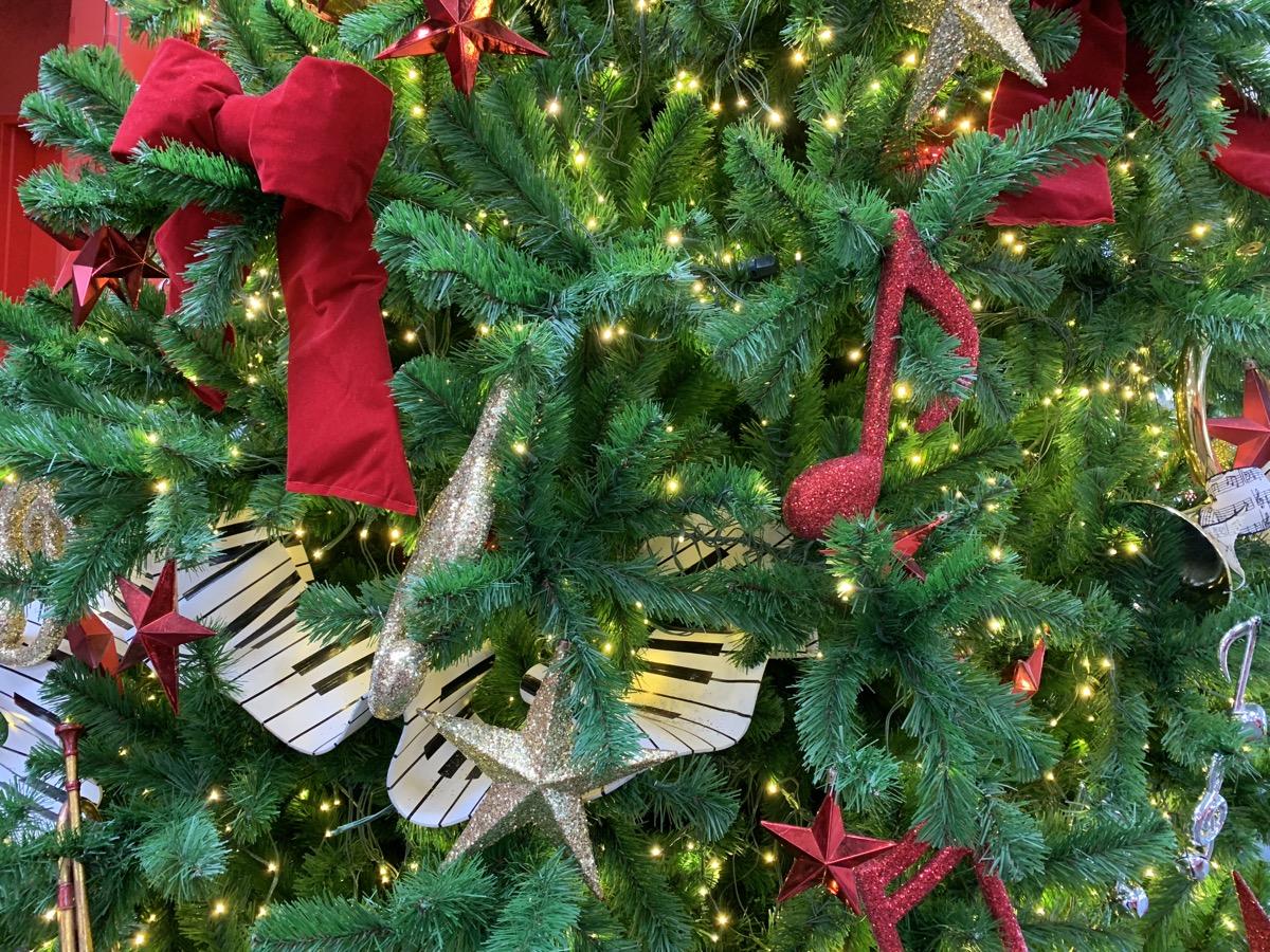 christmas at walt disney world all star music tree 4.jpg