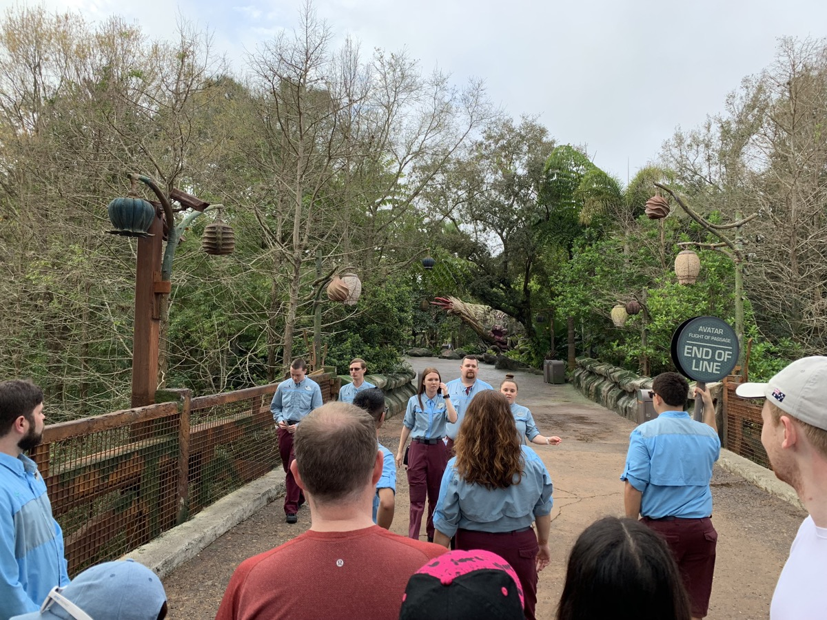 disney animal kingdom rope drop corralling 2.jpeg
