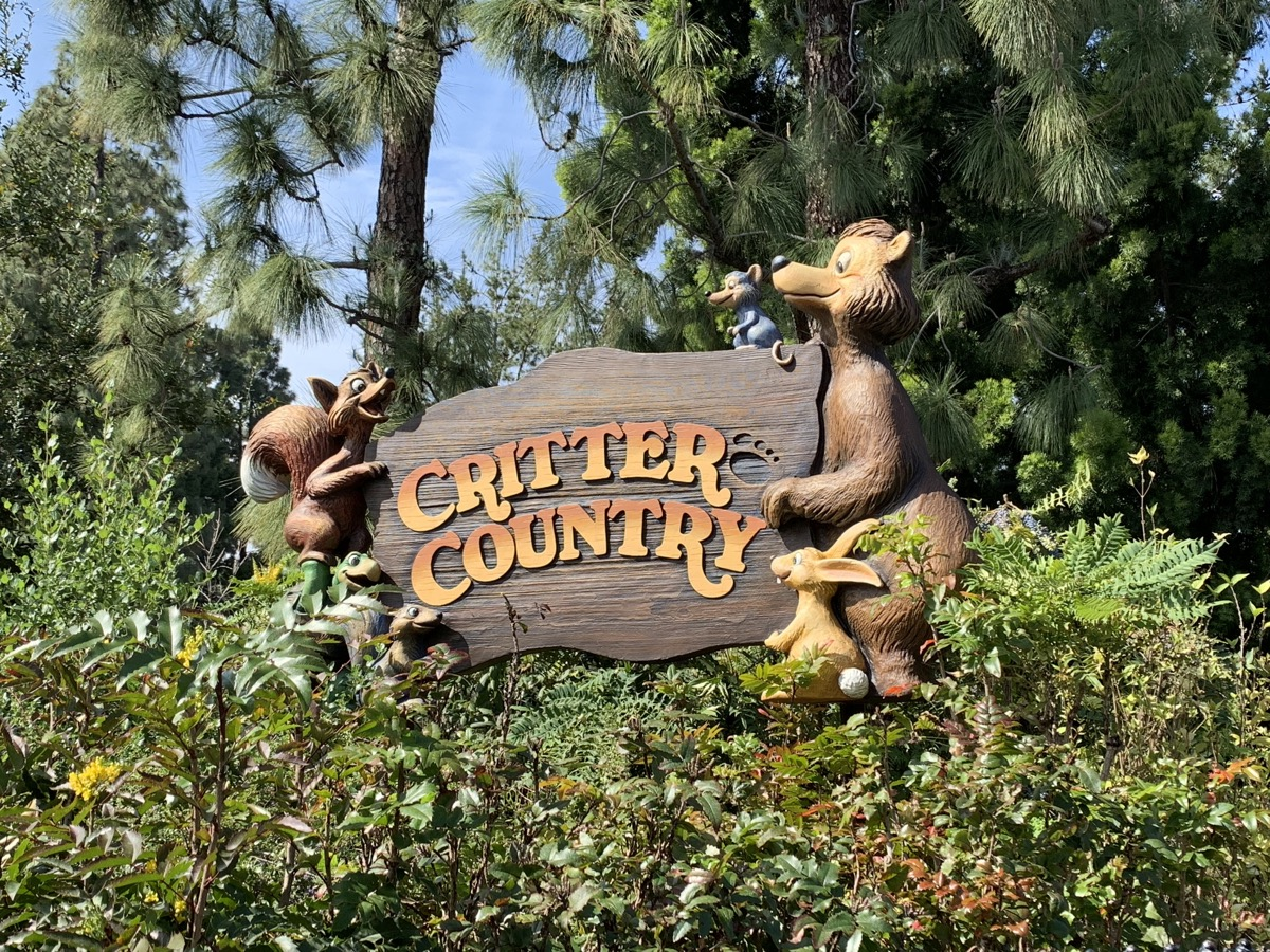 disneyland rides guide critter country.jpg