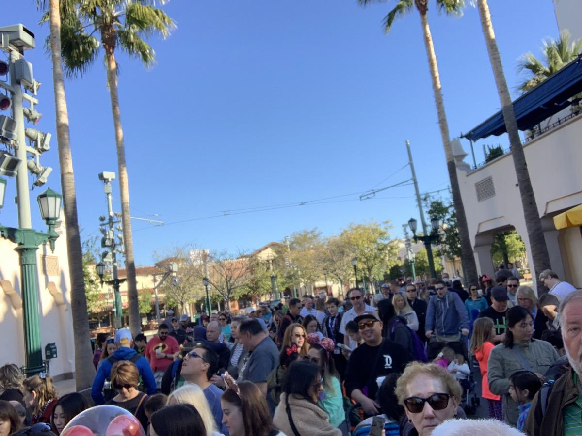 disney california adventure rope drop crowd.jpeg