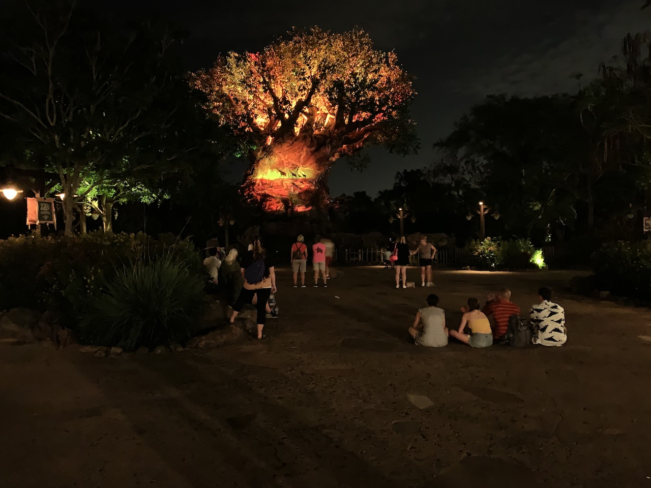 disney world trip report early summer 2019 day three 114 tree of life awakenings.jpeg