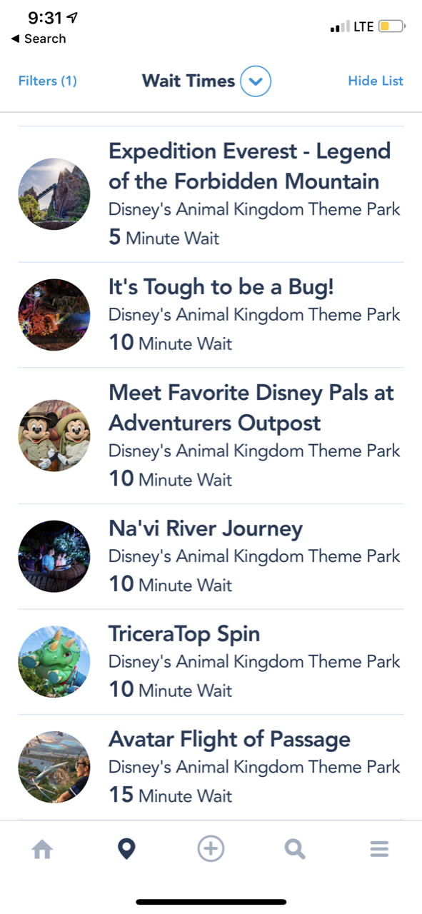 disney world animal kingdom after hours 12 waits.png