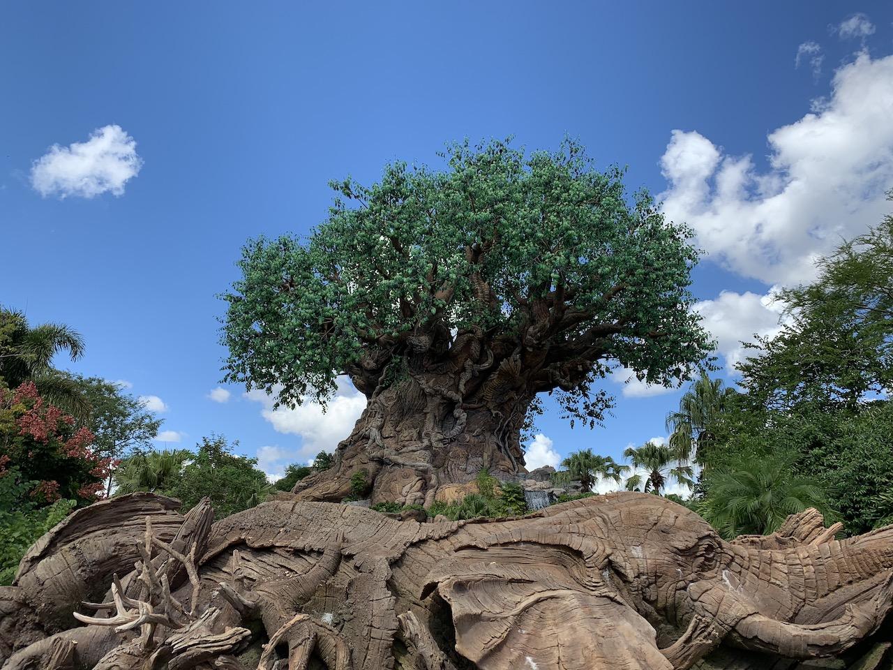 animal kingdom fastpass tips tiers strategy 01 tree.jpeg