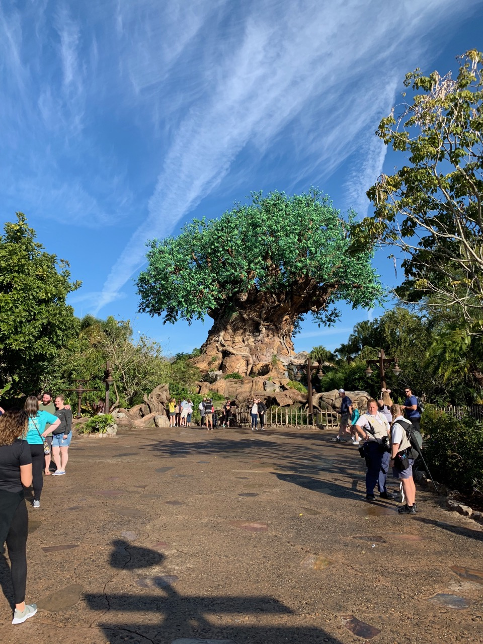 disney animal kingdom hours 02 tree.jpeg