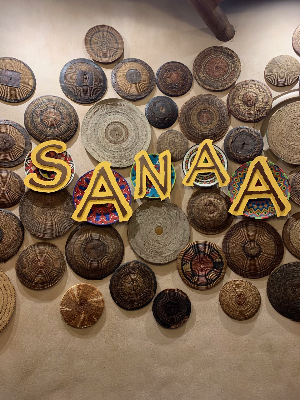 disney world trip report sanaa 01.jpeg