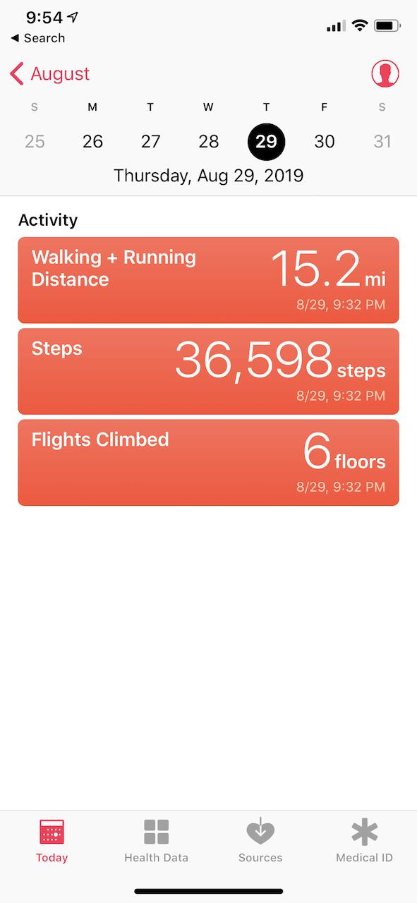 disney world trip report walking.png