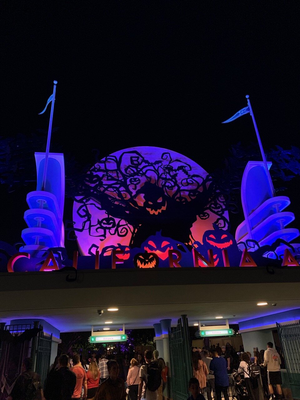 halloween at dca entry.jpeg