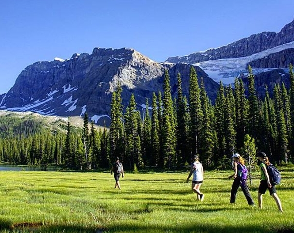Hiking & Sightseeing  - At the heart of the Canadian Rockies, Bow Lake and Num-Ti-Jah Lodge are central to some of the most spectacular and renowned hiking & sightseeing on Earth, with endless opportunity right from our doorstep.
