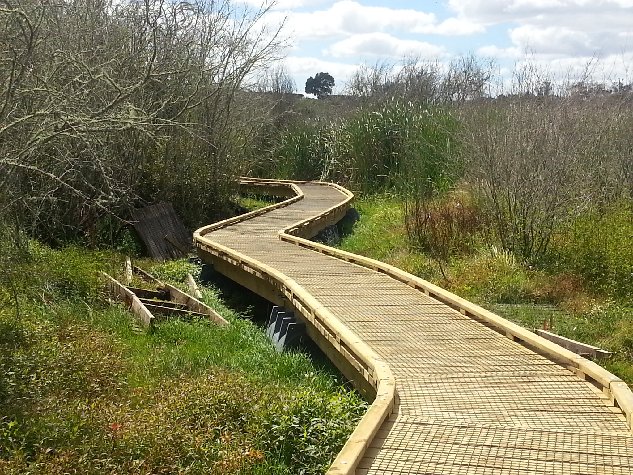 Pontoonz boat pods supporting a walkway through sensitive wetland area.