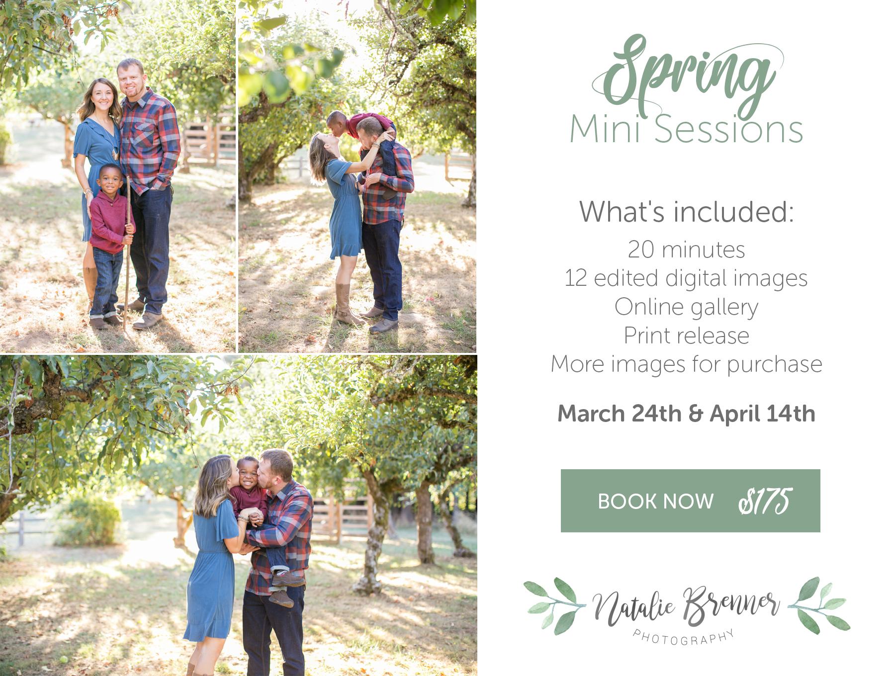 portland spring mini sessions