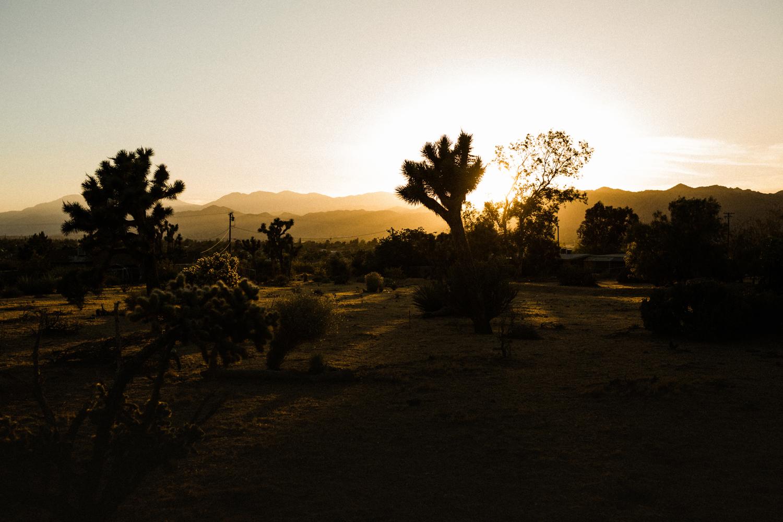 Palm-Springs-Engagement-Photos-84.jpg