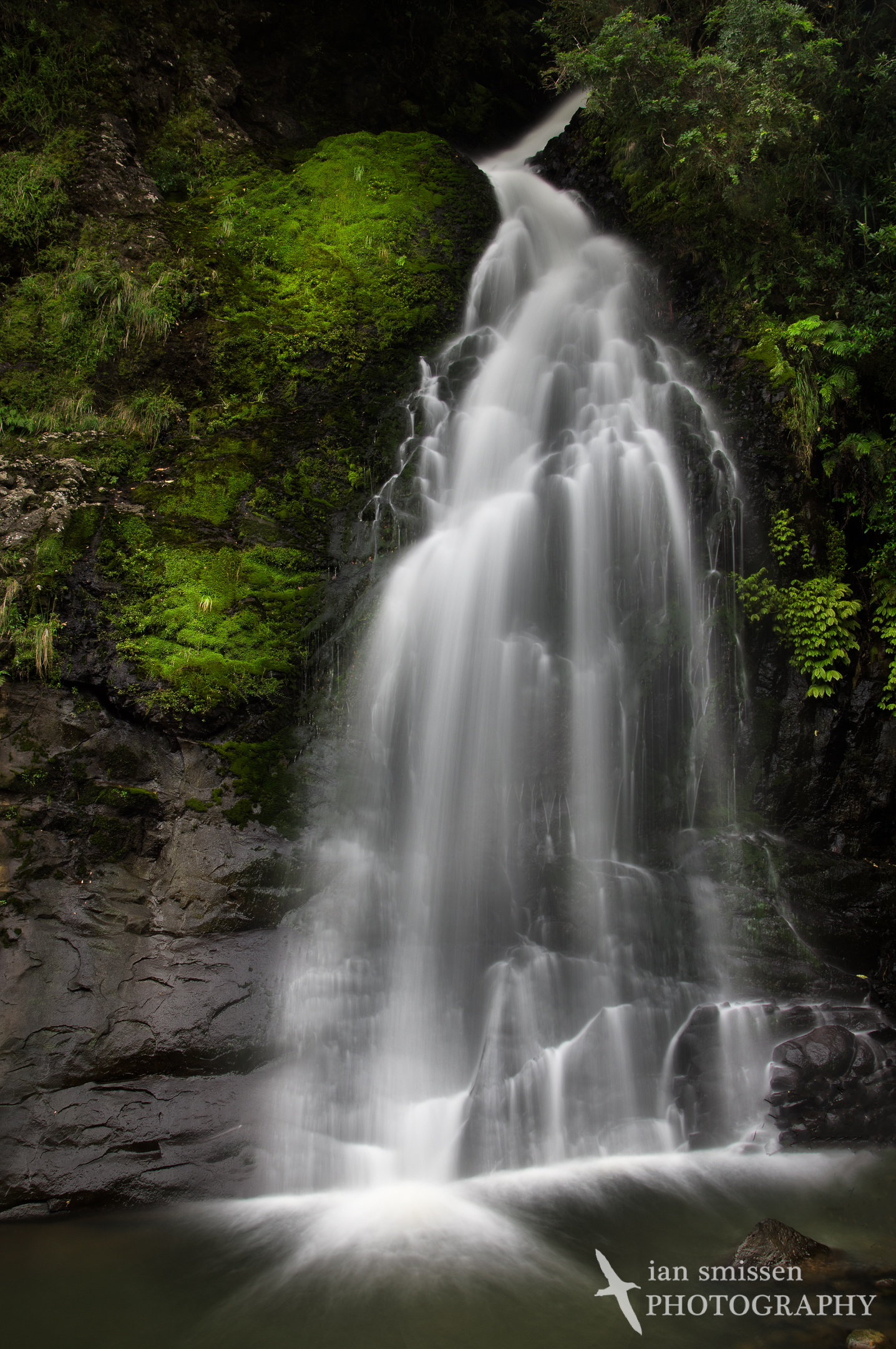 Lower Nihotupu Falls