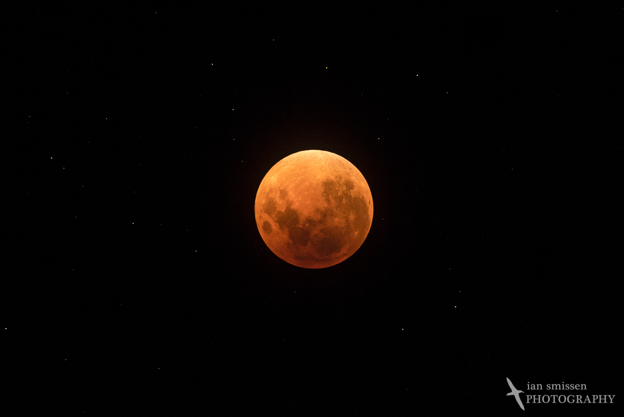 Super Blood Moon (full eclipse)