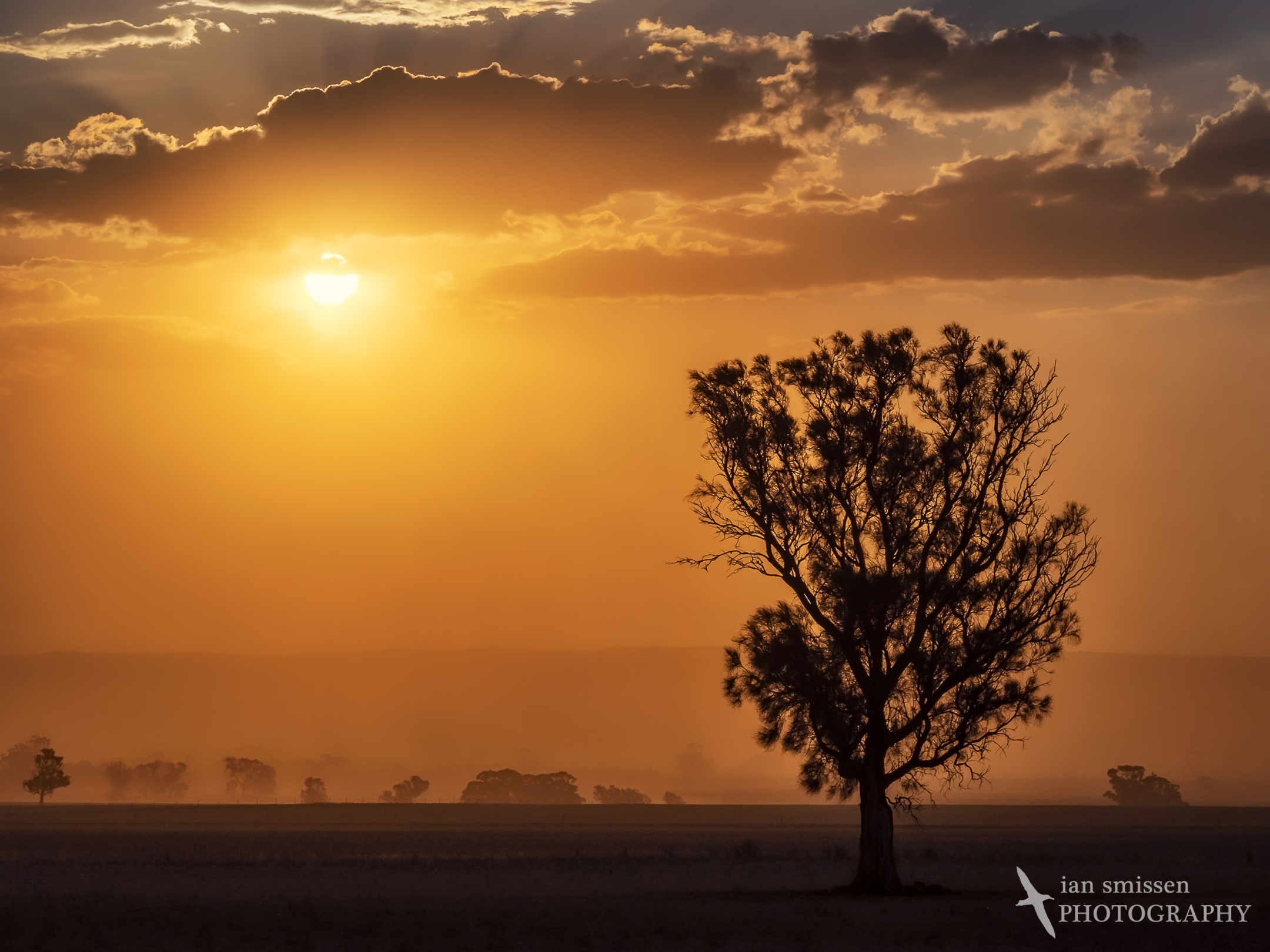 Sunset dust storm