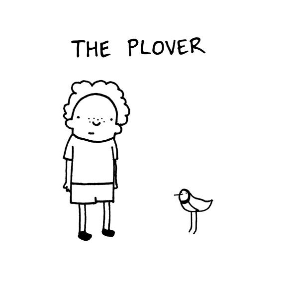 the_plover.jpg