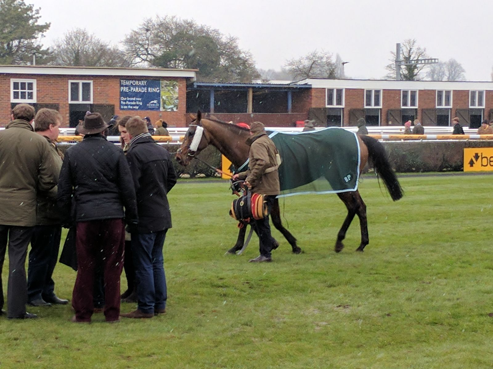 Tobefair in the Winners Enclosure after his win in the 2nd race at Newbury