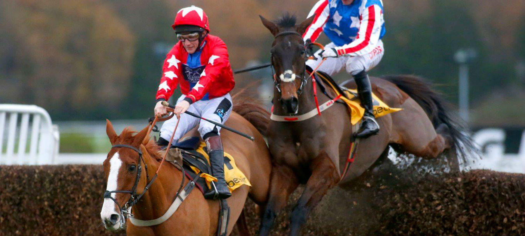 two-horses-finishing-jump-hero.jpg