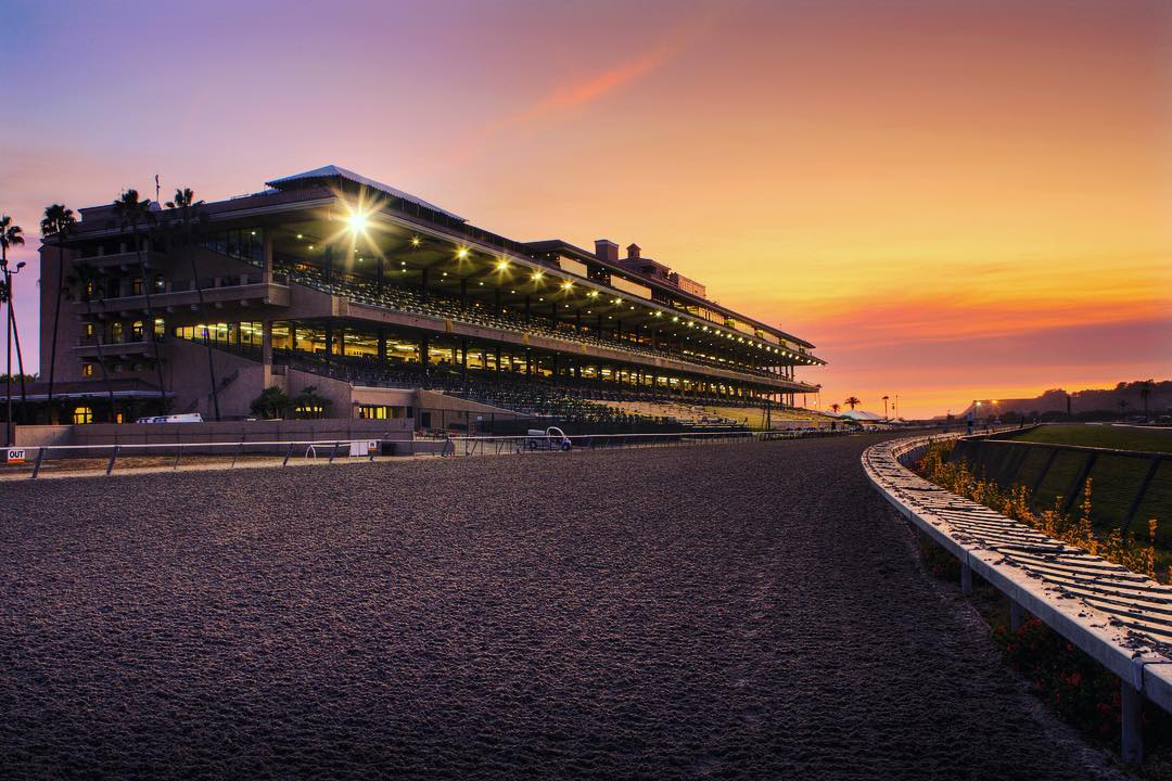 DMTC-Grandstand-UnderTheLights.jpg