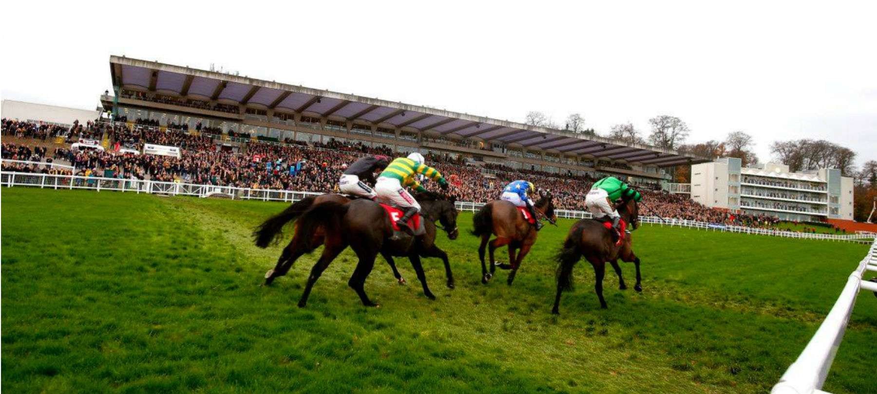 Copy of horses-racing-grandstand-behind-hero.jpg