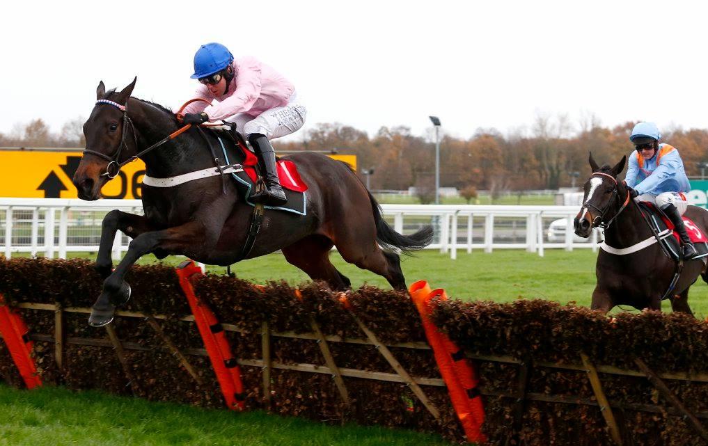 Copy of horse-jumping-pink-jockey.jpg