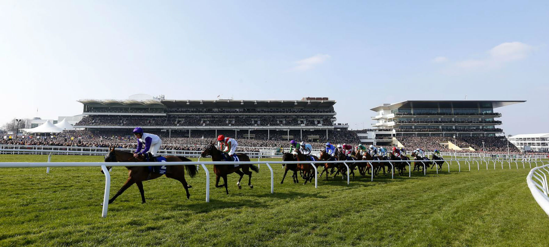 Copy of grandstand-horses-from-track-hero.jpg