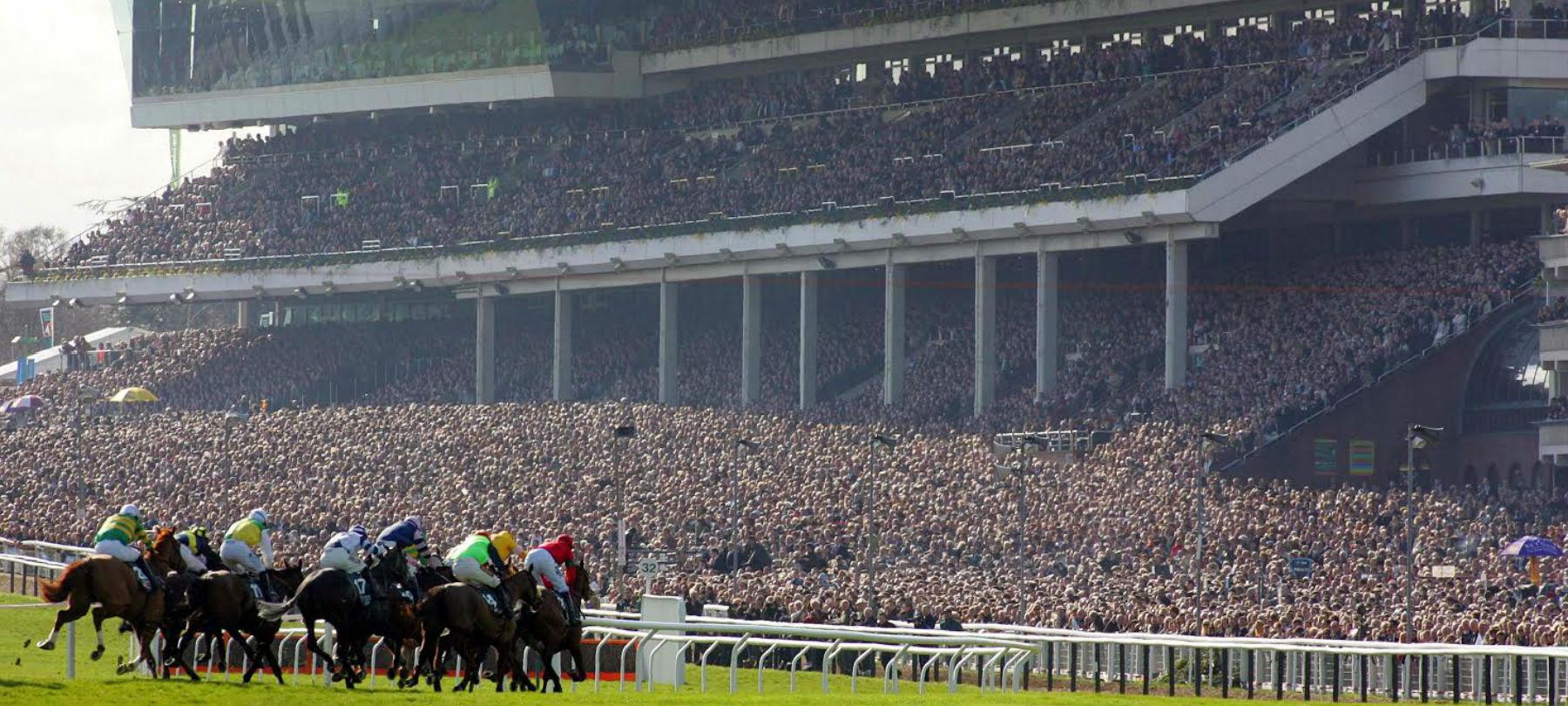 Copy of horses-racing-grandstand-hero.jpg